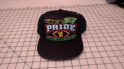 Arctic Cat  Vintage  Collector Hat Cats Pride 1999
