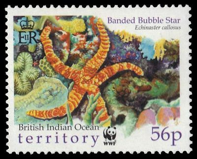"""BR INDIAN OCEAN 234 - WWF Starfish """"Banded Bubble Star"""" (pa12564) BIOT NH"""