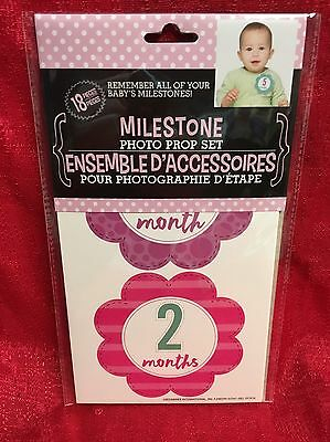 Milestone Photo Prop Baby Infant Stickers Baby Monthly GIRL Flowers