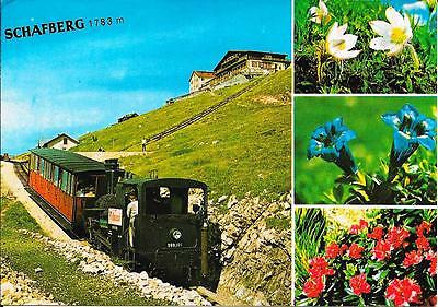 Schafberg - Views - Posted Postcard