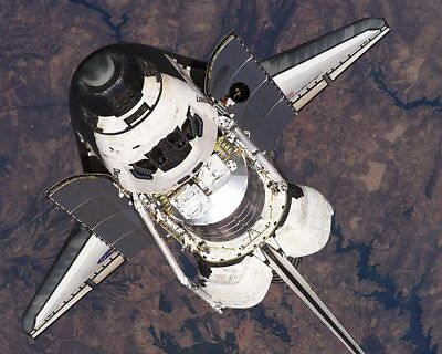 NASA Space Shuttle Discovery in Orbit 11x14 Silver Halide Photo Print