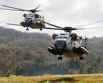 CH-53 / CH-53D Sea Stallion Helicopters 11x14 Silver Halide Photo Print