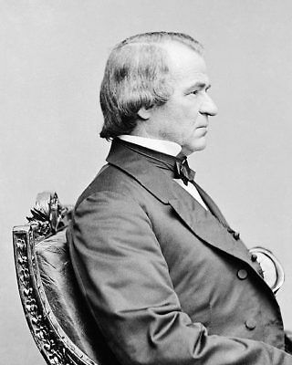 President Andrew Johnson Brady Seated Portrait 11x14 Silver Halide Photo Print