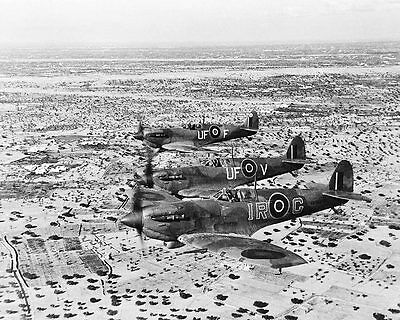 WWII Spitfire Aircraft in North Africa 1943 11x14 Silver Halide Photo Print
