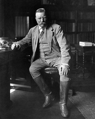 PRESIDENT THEODORE ROOSEVELT LIBRARY 11x14 SILVER HALIDE PHOTO PRINT