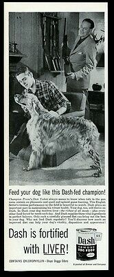 1954 champion English Setter photo Dash dog food vintage print ad