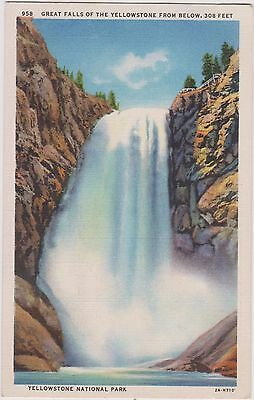 Yellowstone National Park Post Card. Unused