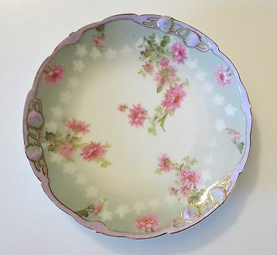 Antique B.R.C Meteor Germany Bauer Rosenthal & Co Hand Painted Plate Dish