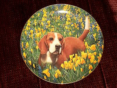 "The Danbury Mint "" Field Trip "" Nancy Aument Beagle in Flowers Collector Plate"