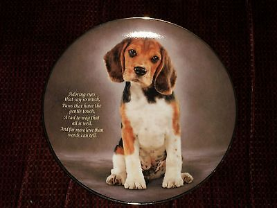 "The Danbury Mint "" Adoring Eyes "" Cherished  Beagles Ltd Edition Collector Plate"