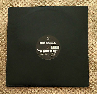 "Todd Edwards - You Came To Me, A Single-Sided Promo Us 12"" Vinyl, Ir-255 (2002)"