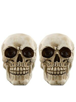 Skull Bookends (Pair) Book End 8x11.5x9cm
