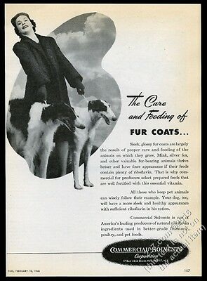 1946 Borzoi Russian Wolfhound photo Commercial Solvents vintage print ad