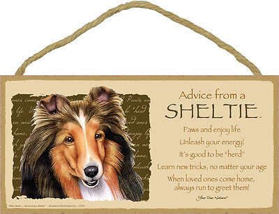 Advice from a SHELTIE 5 X10 hanging Wood Sign made in the USA Shetland Sheepdog