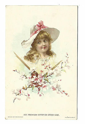 1894 Trade Card Lion Coffee Woolson Spice Premium Pictures Girl Hat Pink Bow
