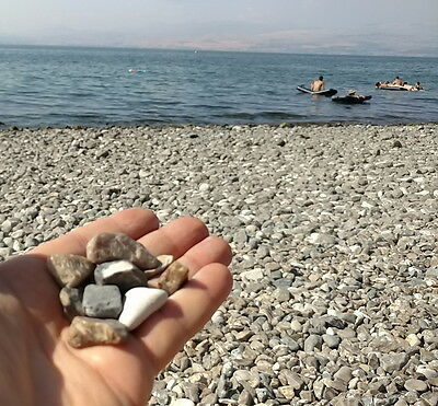 3 Rock Stones from the Sea of Galilee Lake Holy Bible Land Jesus Christ Miracles