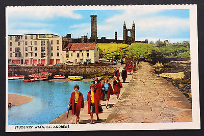 Postcard ~ Students' Walk, St. Andrews ~ c1960's