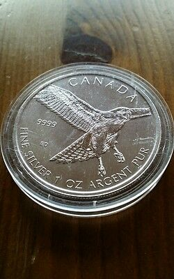 Red-Tailed Hawk 1 oz silver oncia argento 9999 silber 2015 Canada