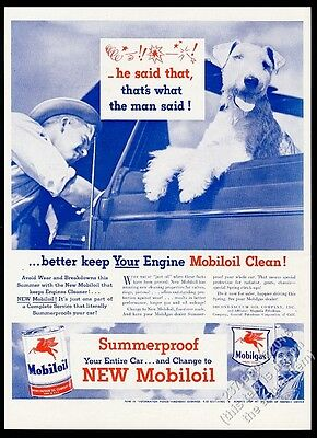 1946 cute swearing airedale terrier photo Mobil Oil vintage print ad