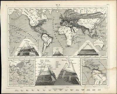 World map Mountain Ranges heights compared 1850s fine antique engraved print