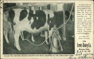 Lewis Dairy Co Denver Co Cow Milking Machine Agriculture c1905 Postcard