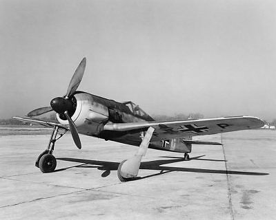 WWII Focke-Wulf Fw 190 German Aircraft 11x14 Silver Halide Photo Print