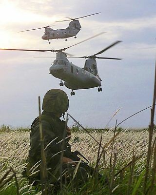 CH-46 Helicopters & 3rd Battalion Marines 11x14 Silver Halide Photo Print