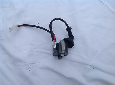 long reach Hedge Trimmer/Chainsaw IGNITION COIL MAGNETO 2-tab Nordstrom & others