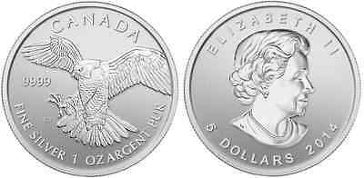CANADA 5 Dollars Argent 1 Once pygargue à tête blanche 2014 - 1 Oz silver coin