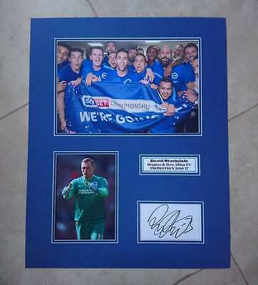 David Stockdale - Brighton & Hove Albion Fc - Huge Signed Photo Montage