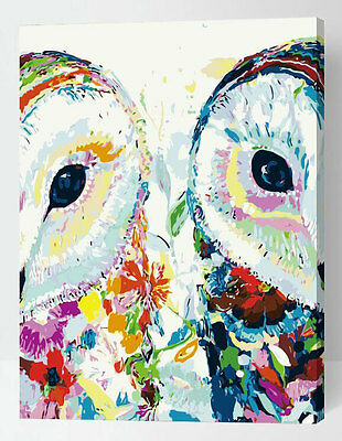 Painting by Number kit Night Owl Double-side Face Bird Little Animal DIY ML7295