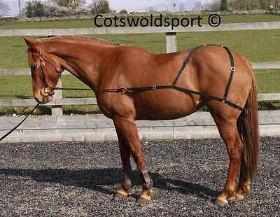 CS  Combi Horse Lungeing Training Aid one size no rollar required