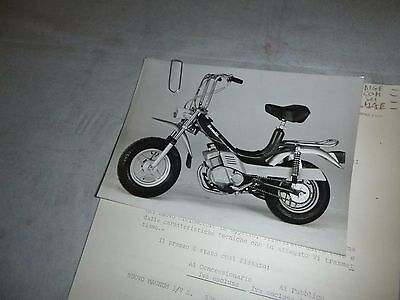 1979 BENELLI , MAGNUM  3V : price list, letter+ press photo (genuine benelli)