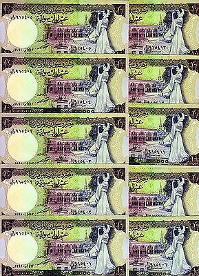 LOT, Middle East, 10 x 10 pounds, 1991, P-101 (101e), UNC