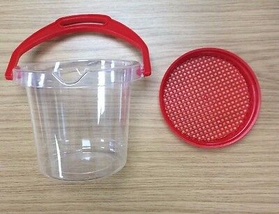 DANTOY CLEAR BUCKET WITH SIEVE LID water, tadpole, fish, crab crabbing bucket