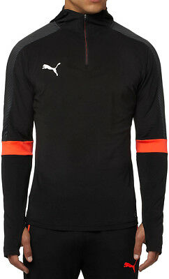 Puma EvoTRG Mens Training Hoody - Black