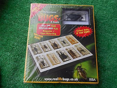 National Geographic Real Life Bugs And Insects Issue 10 Display Box Mag Giant Wa