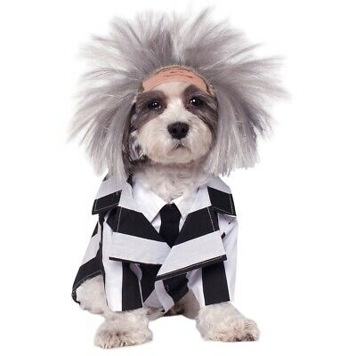 Beetlejuice Dog Costume Funny Pet Outfit Halloween Fancy Dress