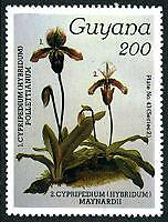 GUYANA Sc.# 1244 Orchids NH Stamps