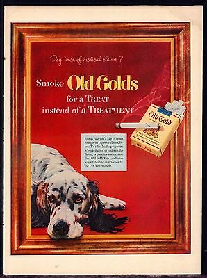 1952 ENGLISH SETTER Old Gold Cigarettes Vintage Print Photo AD