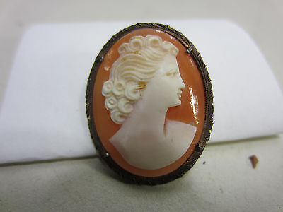 Vintage Goldplated Cameo Necklace/Brooch