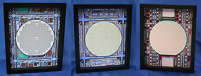 Silicon Wafer - 3 Wafers - Microprocessor, Memory, and Communications Chips