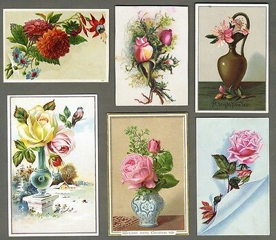 VICTORIAN ROSES and Flowers 6 Greeting Cards 1880's in Vases and Snow
