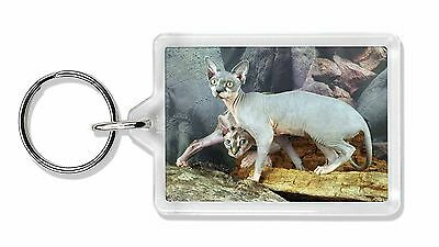 Sphynx Cat Photo Keyring Animal Gift, AC-24K