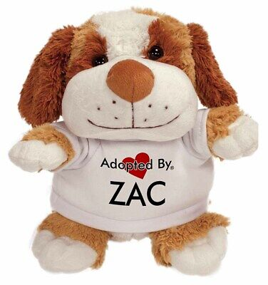 Adopted By ZAC Cuddly Dog Teddy Bear Wearing a Printed Named T-Shirt, ZAC-TB2