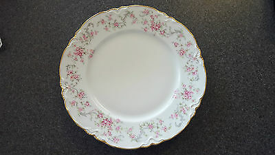 Hutschenreuther Bavaria Germany Chinaware, Richelieu Pattern #7658 DINNER Plate