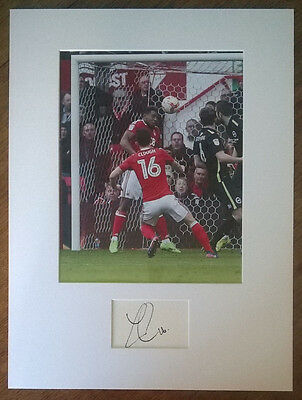 Zach Clough Hand Signed 16x12 Nottingham Forest Display AFTAL COA Football