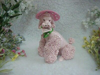Pink Spaghetti Poodle Holding A Letter In Her Mouth~Pink Hat With Rhinestones