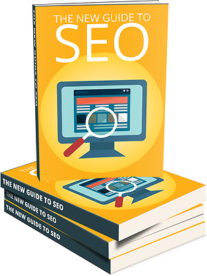 The Step-By-Step Guide To Success With Modern SEO- eBook, Videos and Bonuses CD