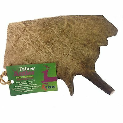 Antos Limited Fallow Antler Dog Chew